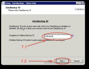 Backup installazione windows 7