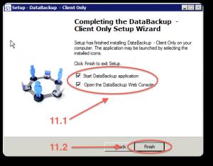 Backup installazione windows 11